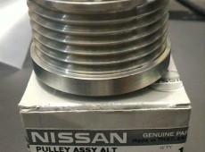 Nissan-infiniti dinamonun şkifi