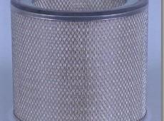 FLEETGUARD af333-hava filteri
