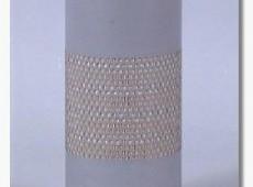 FLEETGUARD af25292 hava filteri